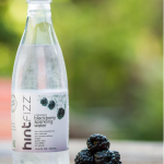 Hint Water Fizz Blackberry